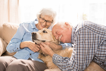 Portrait of happy senior couple cuddling with dog sitting on couch enjoying family weekend at home in retirement