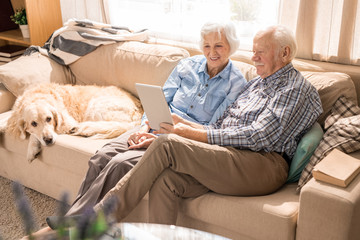 Full length portrait of modern senior couple using laptop while sitting with dog on couch at home