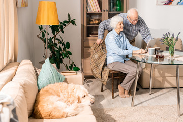 Full length portrait of modern senior couple using laptop sitting at table at home with pet dog in foreground, copy space