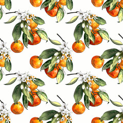 Seamless pattern with mandarins and leaves and flowers on white background. Drawing markers