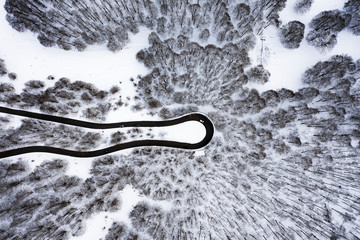 Foto auf AluDibond Grau Aerial view of a beautiful serpentine road with some cars that run through it. Spectacular landscape consisting of a pine trees forest and white snow. National Park of Abruzzo, Lazio and Molise, Italy