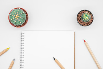 Office table with cactus, notebook and pencil, top view, flat lay with white background