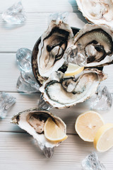 Delicious oysters with lemon, seafood delicacy