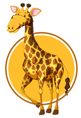 Giraffe on circle banner
