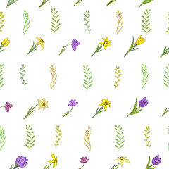 Seamless pattern with different spring flowers. Crocuses, daffodils and herbs. Isolated elements on a white background.
