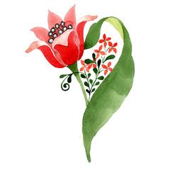 Red floral botanical flower. Watercolor background illustration set. Isolated ornament illustration element.