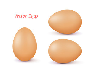 Realistic vector brown 3d egg with a different position