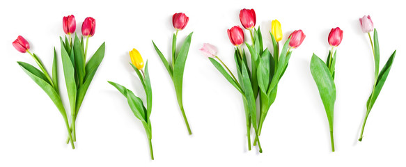 Fotorolgordijn Tulp tulip flowers set isolated on white with clipping path included