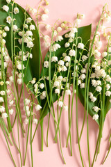 Poster de jardin Muguet de mai Lilies of the valley with green leaves