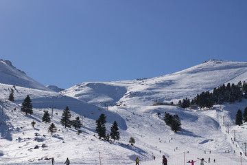 ski resort lane with snowboarders doing sports