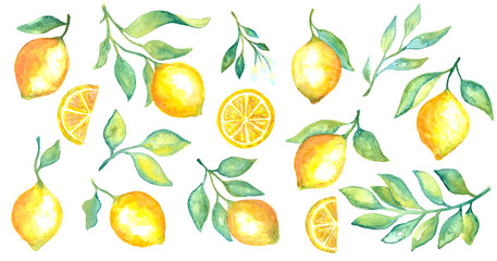 Watercolor fruit lemon and green leaves set on white background
