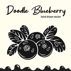 Blueberry vector illustration, berries images. Doodle Blueberry silhouette vector illustration. Blueberry berries images for icon, menu, package design. Black color vector berries images of blueberry.