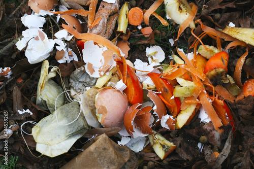 Mülltrennung Biomüll Bioabfall Organische Bestandteile Des
