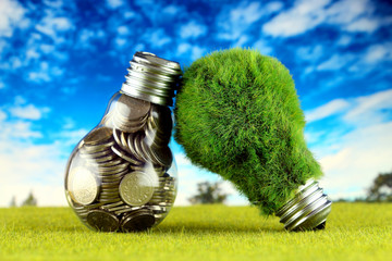 Coins inside the light bulb and green eco light bulb with grass. Renewable energy concept. Electricity prices, energy saving in the household.