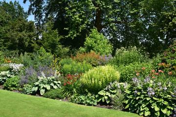 Jardin anglais en été