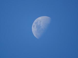 Lune dans la journée