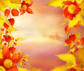empty art floral background with golden leaves and fizalis flowers, copy space