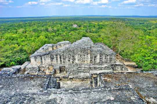 Calakmul -  a Maya archaeological site in the Mexican state of Campeche.