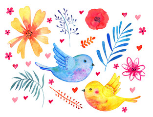 Set with birds couple and decorative plants, flowers and leaves. Watercolor hand drawn skech illustration