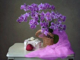Still life with blooming orchids