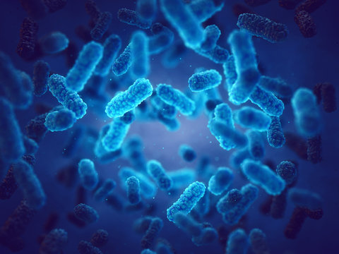 Pathogenic bacteria, Epidemic bacterial infection