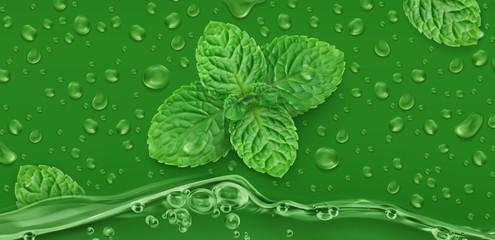 Green drops. Mint. 3d realistic vector