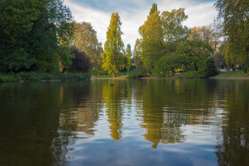 Wall Murals United States Paris, France - 11 03 2018: Neighborhood of Villette. The park Buttes-Chaumont. Trees reflecting on the water