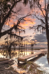 View on the pier at the lake with oak trees during sunrise
