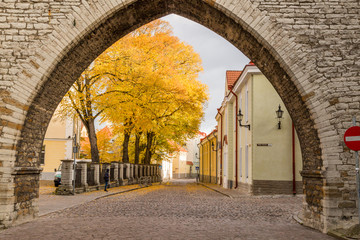 Europe, Eastern Europe, Baltic States, Estonia, Tallinn. Old town, arched entryway into oldtown.