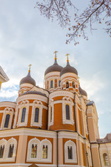 Europe, Eastern Europe, Baltic States, Estonia, Tallinn. old town, Alexander Nevsky Cathedral.