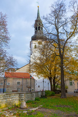 Europe, Eastern Europe, Baltic States, Estonia, Tallinn. Old town, The Cathedral of Saint Mary the Virgin or Dome Church or Toompea Cathedral