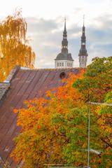Europe, Eastern Europe, Baltic States, Estonia, Tallinn. Autumn leaves, roof tops, old town.