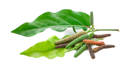 Fresh Long Pepper isolated on white background Wall mural