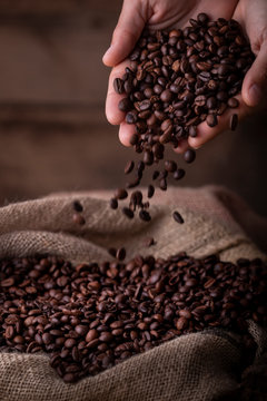 Crop close-up view of hands with coffee beans pouring to sack