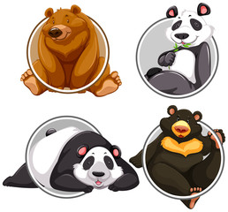 Set of different bear banner