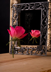 Single rose standing upright in front of a framed mirror creating a reflection of itself.