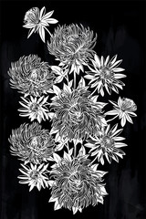 Blossoming Chrysanthemum or Aster flower composition.