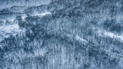 Dark winter road in the forest during blue hour. Aerial drone view