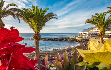 Wall Mural - Landscape with Arena beach in Puerto de Santiago city, Tenerife, Canary island, Spain