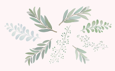 Set with beautiful twigs with leaves. Wedding ornament concept. Imitation of watercolor, isolated on white.