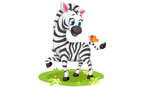 Baby Zebra vector illustration