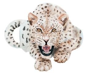 watercolor drawing animal leopard, aggressive, teeth, sketch