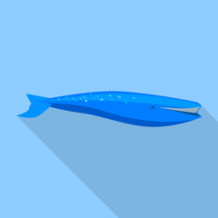 Blue whale icon. Flat illustration of blue whale vector icon for web design