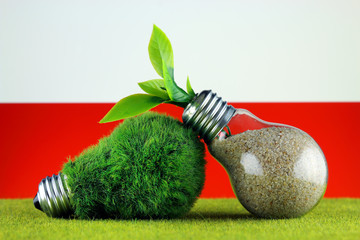 Green eco light bulb with grass, plant growing inside the light bulb, and Poland Flag. Renewable energy. Electricity prices, energy saving in the household.