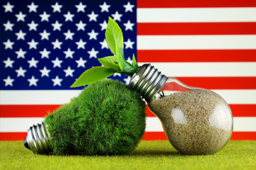Green eco light bulb with grass, plant growing inside the light bulb, and United States Flag. Renewable energy. Electricity prices, energy saving in the household.