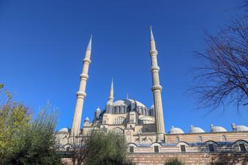 Blue sky and Selimiye Mosque Edirne
