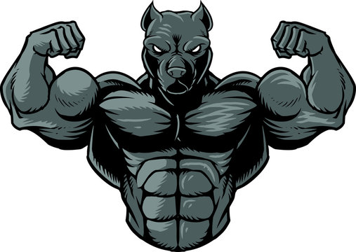 Strong pit bull 2