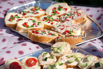 Variety of mini sandwiches with cheese cream, vegetables  roasted cherry tomatoes, olives, cucumber, spring onions, paprika, basil and other herbs. Fresh appetizer canape at the picnic outdoors.