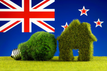 Green eco light bulb, eco house icon and New Zealand Flag. Renewable energy. Electricity prices, energy saving in the household.