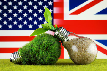 Green eco light bulb with grass, plant growing inside the light bulb, United States and United Kingdom Flag. Renewable energy. Electricity prices, energy saving in the household.